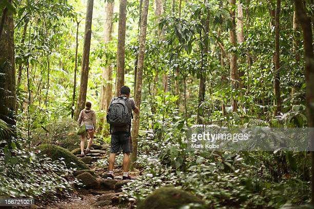 A photographer stops to take a picture as he walks through the world heritage listed daintree rainforest on November 14 2012 in Mossman Gorge...