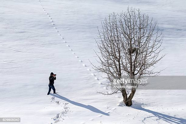 A photographer takes pictures of a three during snowfall in Van Turkey on December 15 2016