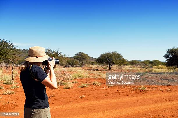photographer taking pictures with nikon camera , madikwe, south africa - nikon stock pictures, royalty-free photos & images