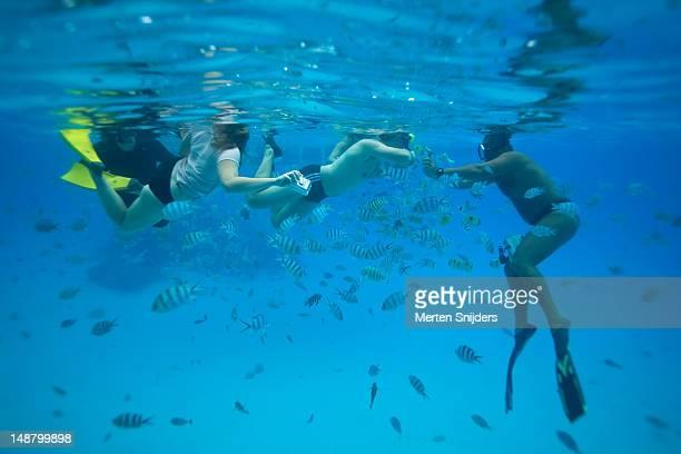 photographer taking underwater shots of snorkelers amidst tropical fish in bora bora lagoon. - merten snijders stockfoto's en -beelden