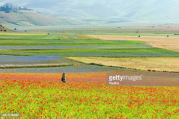photographer wearing long green-blue dress near castelluccio, italy - umbria stock pictures, royalty-free photos & images