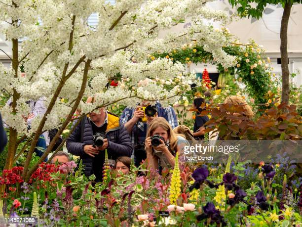 Photographers attend press day at Chelsea Flower Show on May 20 2019 in London England The RHS Chelsea Flower Show takes place annually at the Royal...