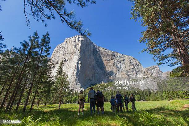 Photographers on a meadow El Capitan is pictured in the background Spring time in the Yosemite Valley located inside the Yosemite National Park