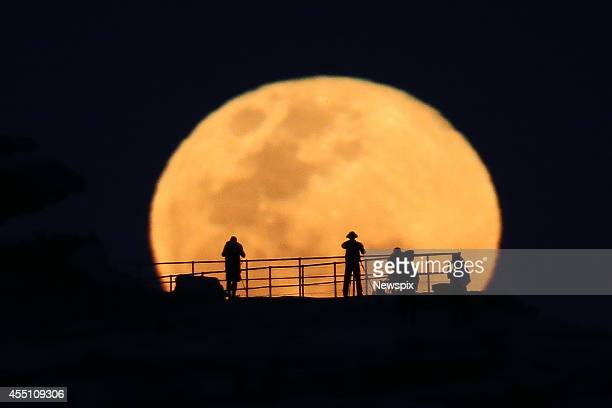 Photographers take images of the full supermoon as it rises over North Bondi headland on September 9 2014 in Sydney Australia A supermoon or harvest...