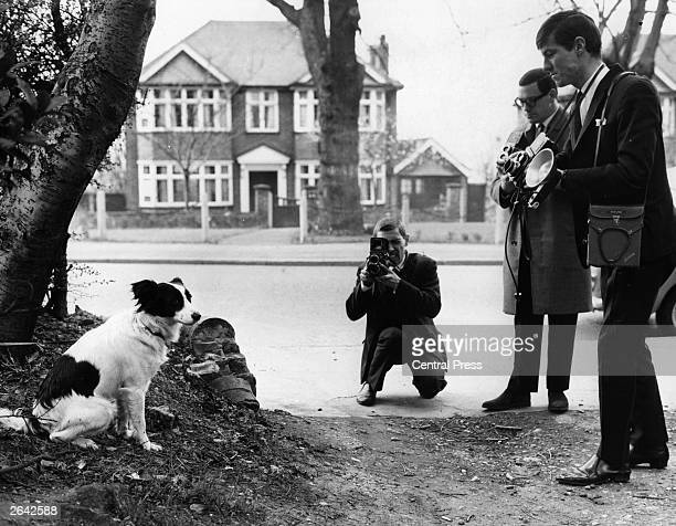 Photographers take photographs of Pickles the dog who sniffed out the missing Jules Rimet World Cup Trophy which had been stolen from the National...