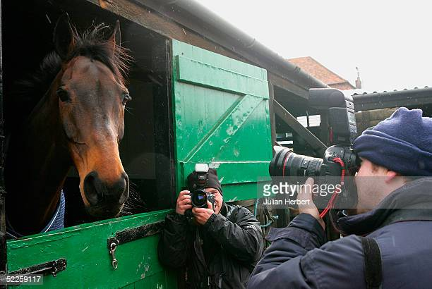 Photographers take pictures of triple Gold Cup wining horse Best Mate during a media open day at Henrietta Knight's stables in Oxfordshire on March 1...
