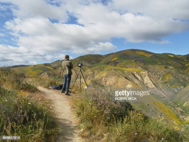 Photographers wait for the perfect light to shoot the wildflower covered hills of the Tremblor Range in Carrizo Plain National Monument near Taft...