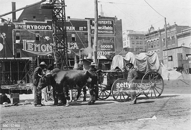 Photographic print by George Davis of a downtown farmers market scene replete with oxen Roanoke Virginia circa 1900