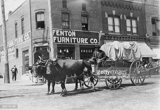 Photographic print of a loaded oxcart by George Davis of a downtown farmers market Roanoke Virginia circa 1900