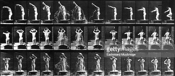 A photographic study of the movements of a naked woman washing herself in a tub using quick succession time lapse photography by Eadweard Muybridge...