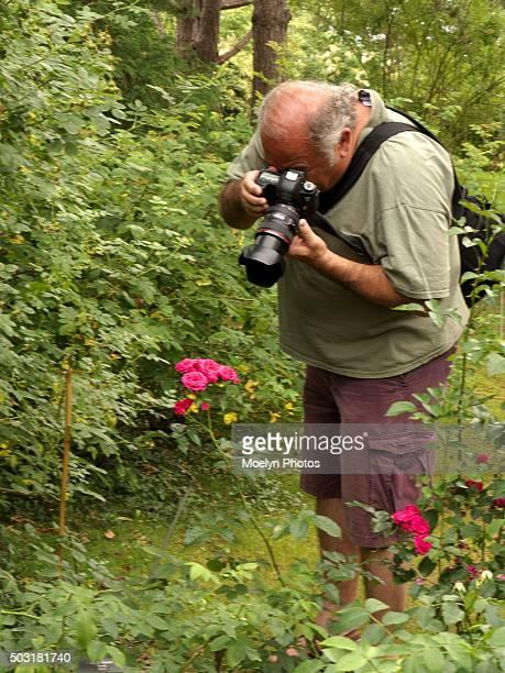 photographing flowers at annapolis royal - botanischer garten stock-fotos und bilder
