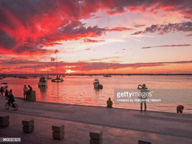 photographing the la paz red sunset - sea of cortez stock pictures, royalty-free photos & images