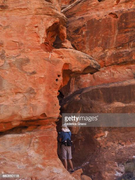 Photographing The Petroglyphs At Gold Butte National Monument, Nevada