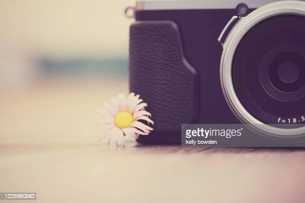 photography camera background - kelly bowden stock pictures, royalty-free photos & images