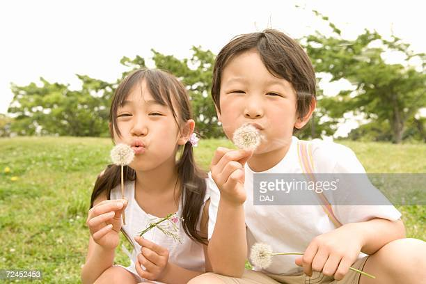 photography of a girl and a boy blowing dandelions, low angle view - feuille de pissenlit photos et images de collection