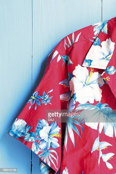 Photography of a Hawaiian shirt, Front View