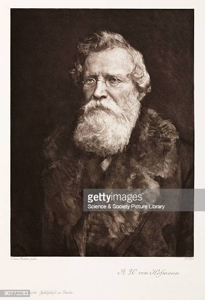 Photogravure after a painting by Hanns Fechner of Hofmann who in 1845 became the first director of the Royal College of Chemistry in London He was...