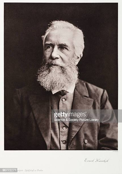 Photogravure after a photograph of naturalist Ernst Haeckel . Born in Potsdam, Haeckel became professor of zoology at the University of Jena in 1862....