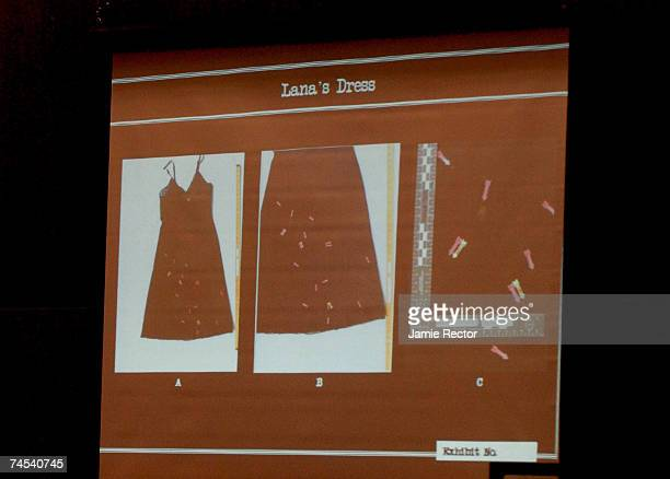 Photos of actress Lana Clarkson's dress are shown during the murder trial of music producer Phil Spector June 11, 2007 in Los Angeles, California....