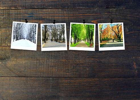 Photos of four seasons attached to dark wooden wall. Seasons on dark background 1084287002
