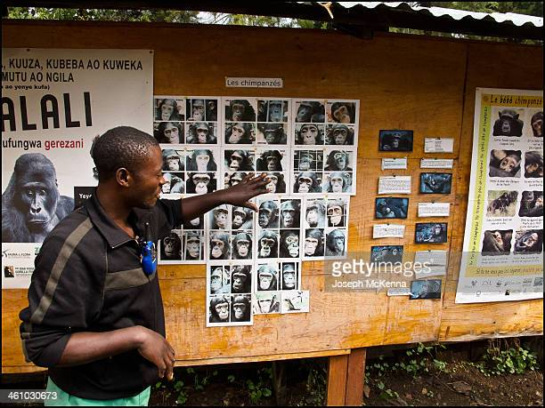 CONTENT] Photos taken on the grounds of Lwiro Sanctuary and the old Belgian university that is now a research center in South Kivu Democratic...
