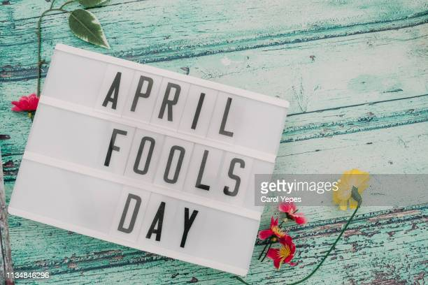 phrase 'april fools day in lightbox - idiots stock pictures, royalty-free photos & images