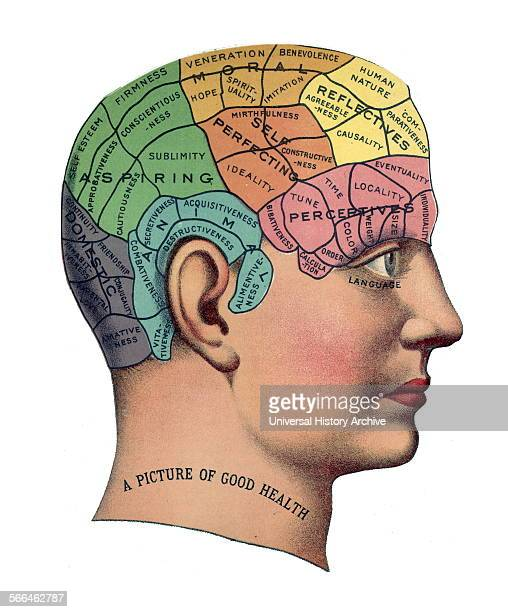 Phrenological chart of 1859 phrenology was founded in the early 19th century by Franz Josef Gall It holds that different intelligences and...