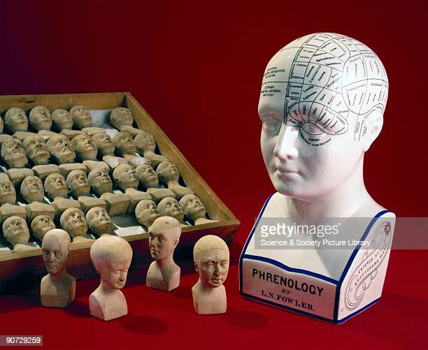A phrenological head developed by the American brothers Lorenzo and Orson Fowler to assist in the reading of a subject's skull 18601896 and a case of...