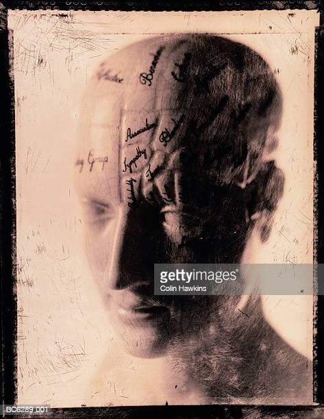Phrenology bust, close-up (B&W, distressed)