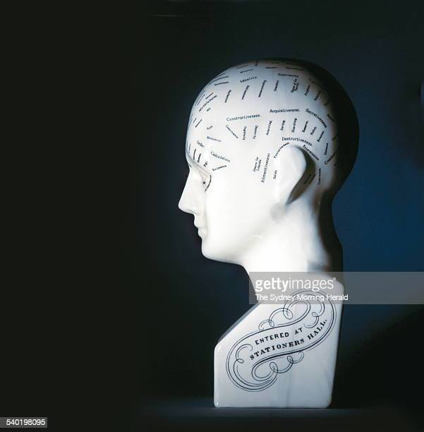 Phrenology bust pictured on 29 June 2004 SMH the magazine Picture by STEVE BACCON
