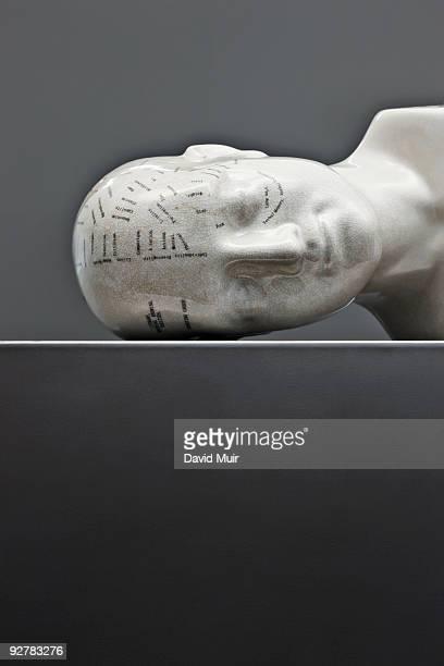 phrenology head laying sideways