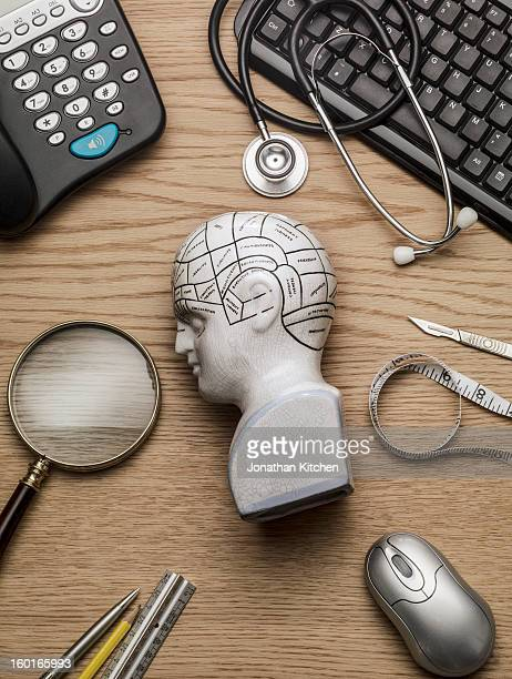 phrenology head on a doctors head side on - mental health stock photos and pictures