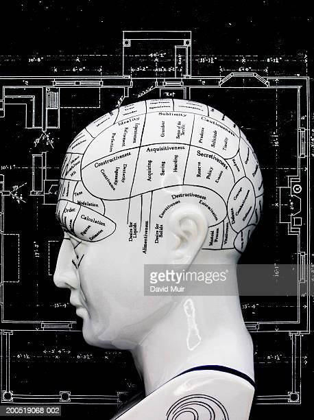 Phrenology head on blue prints (digital composite)