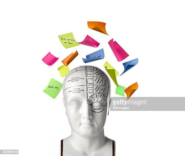 Phrenology head with post-it note