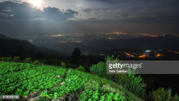 phu thap boek mountain in phetchabun province at thailand. - boek imagens e fotografias de stock