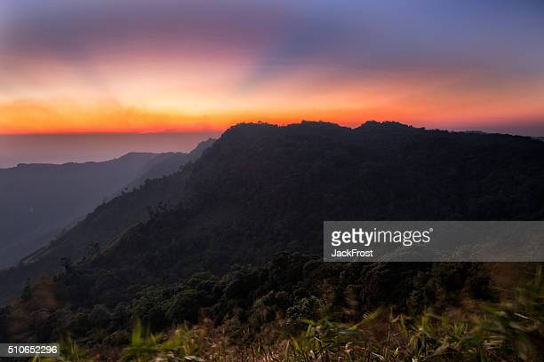 phu thap boek - boek stock pictures, royalty-free photos & images