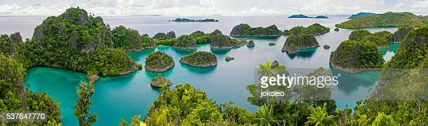 pianemo - raja ampat islands stock photos and pictures