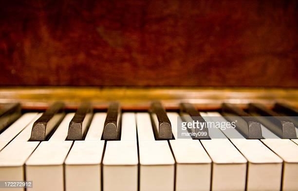 piano keys (shallow depth of field)