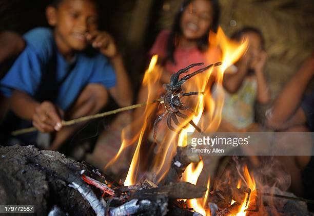 Piaora children roast Goliath tarantula spiders
