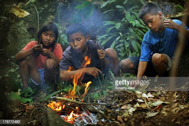 Piaora tribal children roast Goliath tarantulas
