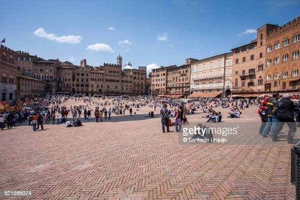 piazza del campo in siena - square stock pictures, royalty-free photos & images