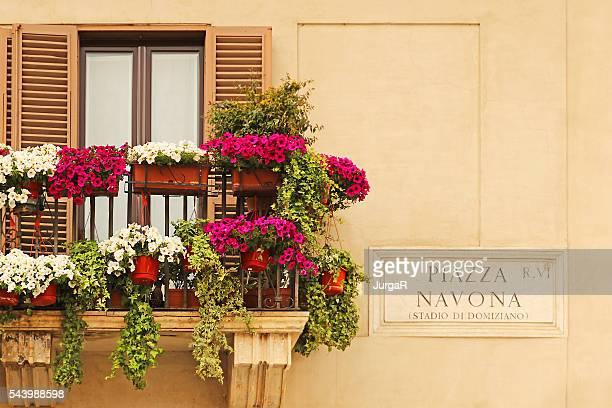 Piazza Navona Schild und Blumen auf einem Balkon