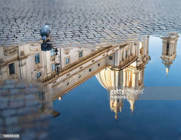 Piazza Navona with puddle and pigeon, Rome Italy
