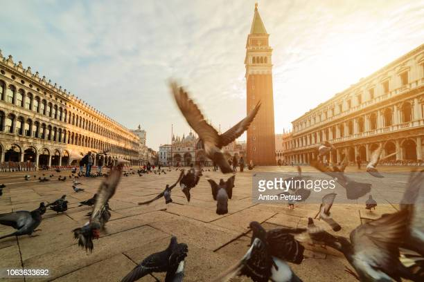 piazza san marco with the basilica of saint mark and the bell tower in venice, italy. - venedig stock-fotos und bilder