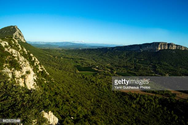 pic saint loup and hortus, herault occitanie, france - herault stock photos and pictures