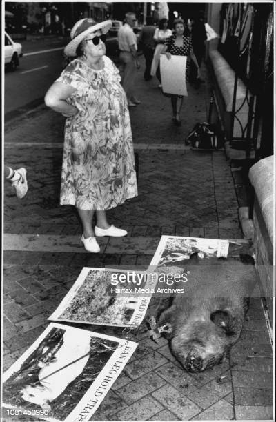 Mrs Helen Hussey of Maroubra looks against at the protest.Large numbers of protected native animals are caught indiscriminately in leg hold traps....