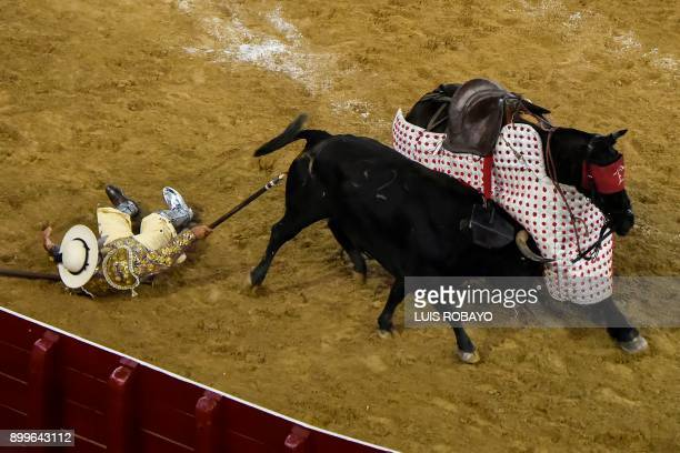 A picador falls from his horse during a bullfight at the Canaveralejo bullring during the 60th edition of the Cali Fair in Cali department of Valle...
