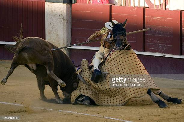 A picador prepares to receive a bull during a bullfight at the Malagueta Bullring in Malaga on August 13 2012 AFP PHOTO/ JORGE GUERRERO