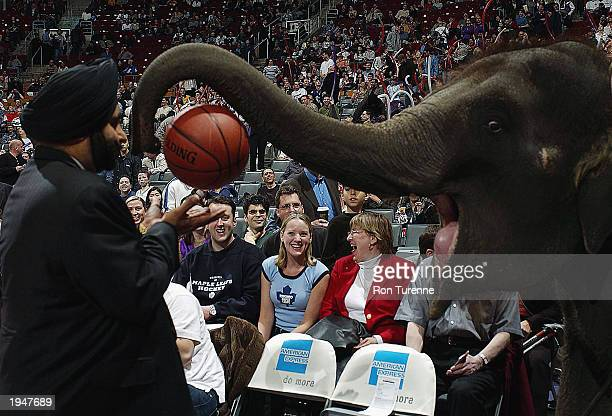 Piccolo the Elephant hands off the game ball to Toronto Raptors SuperFan Nav Bhatia prior to the NBA game between the Milwaukee Bucks and the Toronto...