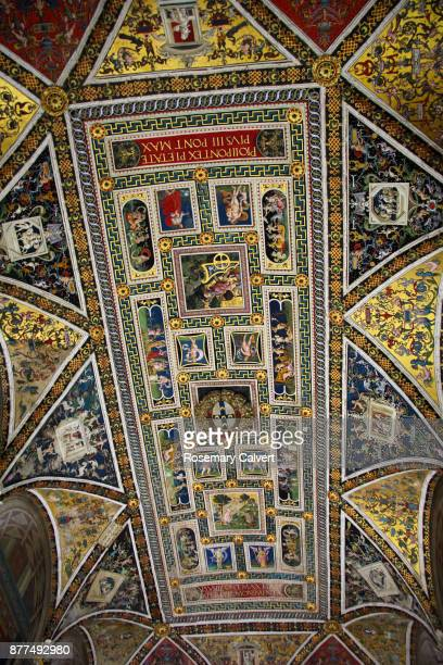Piccolomini library ceiling, Siena Cathedral.